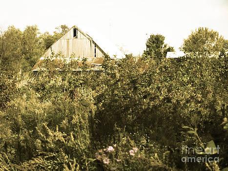 Old Barn In Ohio by Alisha Greer