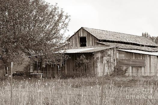 Connie Fox - Old Barn in Sepia