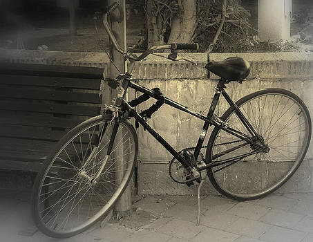 Old Bike by Amr Miqdadi