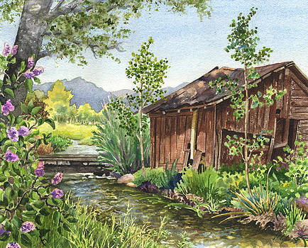 Anne Gifford - Old Braley Barn