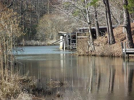 Old Creek by Terrill Wilson