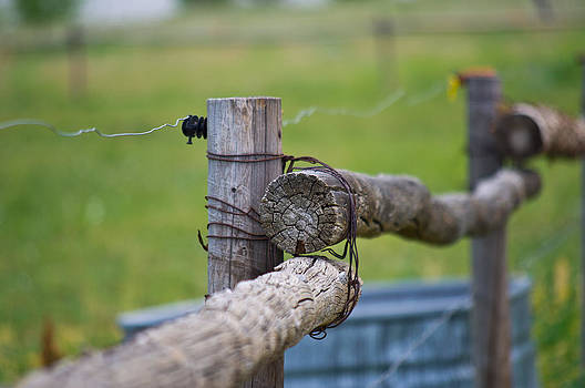 Old Fence by Michael Krahl