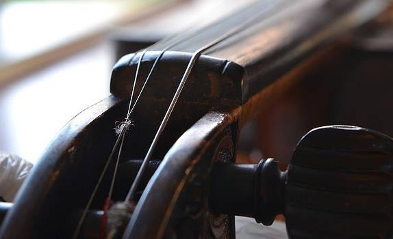 Bill Owen - Old Fiddle 3