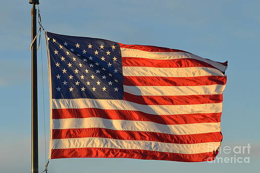 Old Glory by Terry Pettitt