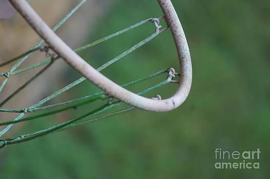 Old Hoop by Nicholas Pena