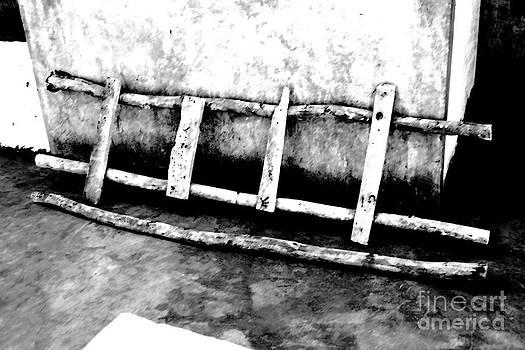 Old Ladder by Denis Shah