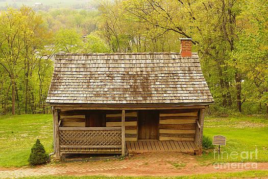 Old Log Cabin by J Jaiam