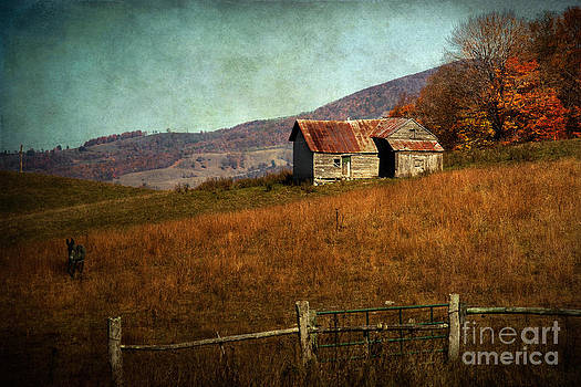 Old Mountain House by Susan Isakson