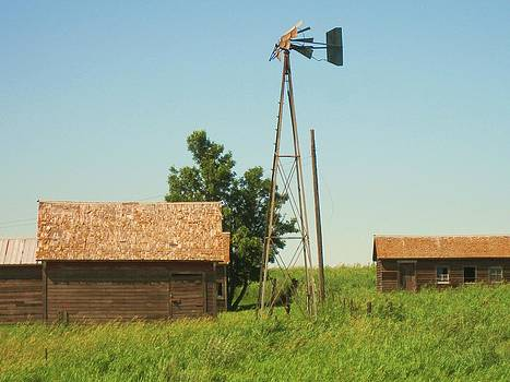 Old ND Homestead by Trish Pitts