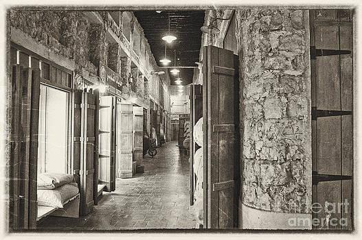 Old Path by Mamoon Abdulla