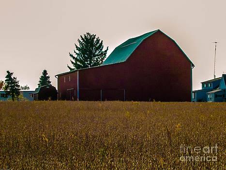 Old Red Barn  by Alisha Greer