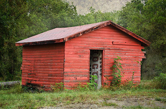 Old Red Shed by Lisa Moore