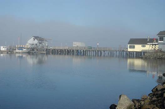 Old Seabeck Pier by Wanda Jesfield