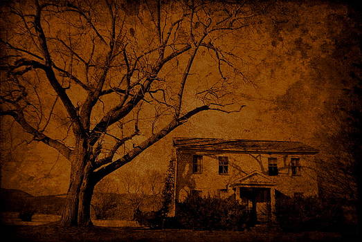 Emily Stauring - Old Sepia