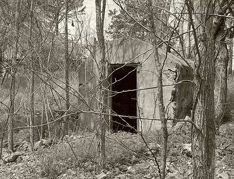 Old Shelter by Lora Hall
