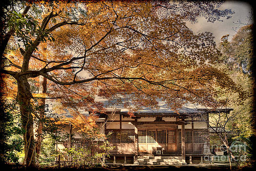 Old Shrine in Autum by Tad Kanazaki