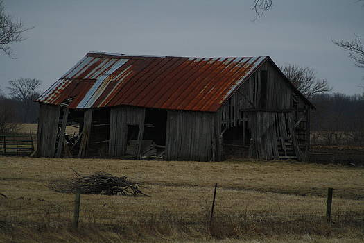 Old Tin Roof Barn by Ralph Hecht