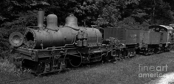 Old Train by Denise Jenks