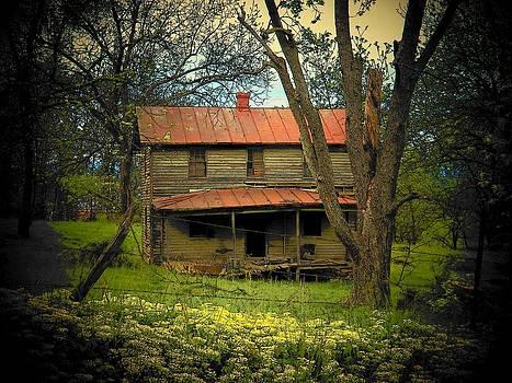Old Virginia House by Joyce Kimble Smith