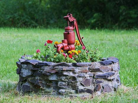 Donna Walsh - Old Water Pump