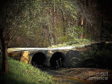 Old West Virginia Bridge by Joyce Kimble Smith