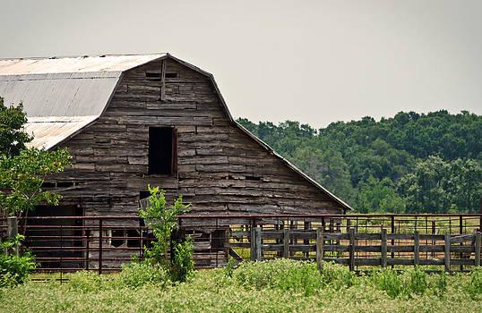 Old Wood Barn by Lisa Moore