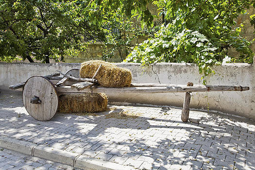 Kantilal Patel - Old wooden Cart in the shade