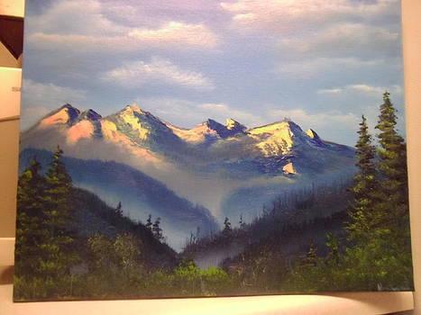 Olympic National Forest  WA by Thomas Hostvedt