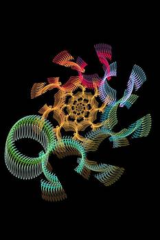 Omega by Rick Chapman