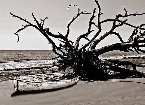 On the Beach by Jim Ziemer