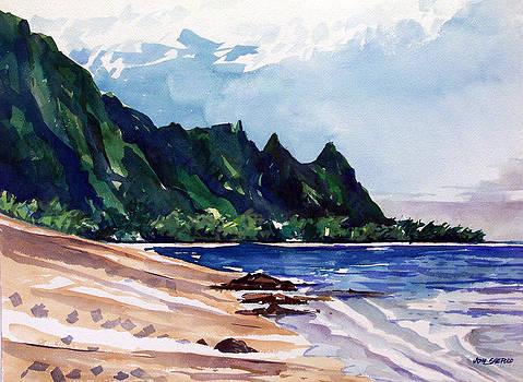 On the Beach by Jon Shepodd