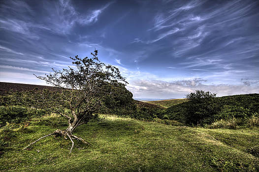 On Top of Exmoor by Mike Gorton