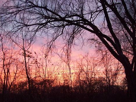 One Beautiful Sunrise by Lora Hall