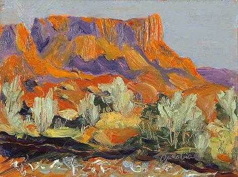 Onion Creek Fiesta Castle Valley Moab Utah by Zanobia Shalks