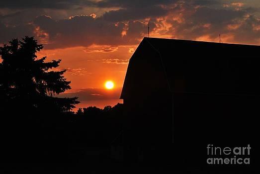 TSC Photography Timothy Cuffe Jr - Ontario County NY 5