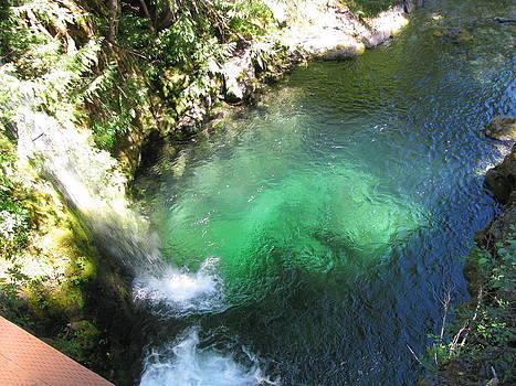 Opal Creek Waterfall by Monica Cranswick