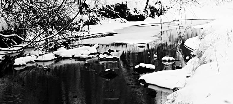 Larry Ricker - Open Water