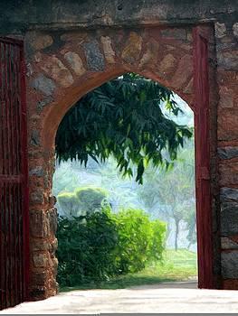 Open Your Doors Of Perception  by Shiladitya Sinha