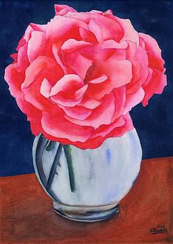 Ken Powers - Opera Rose
