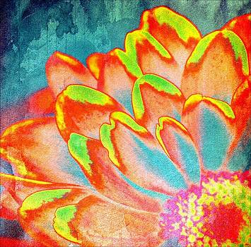 Orange and Yellow Petals of color by Cathie Tyler