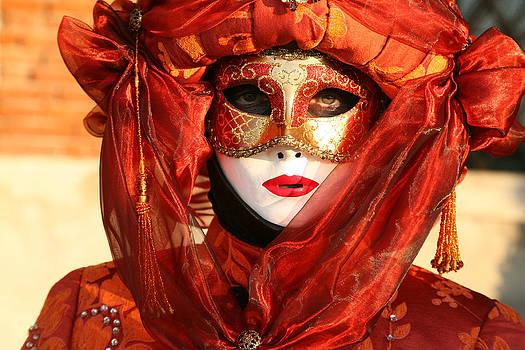 Donna Corless - Orange Arab