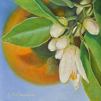 Orange et Fleur by Muriel Dolemieux
