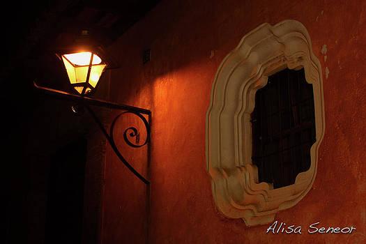 Orange Glow by Alisa Seneor