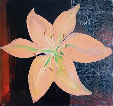 Orange Lily on Black by Samar Asamoah