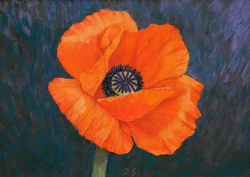Orange Poppy by Xenia Sease