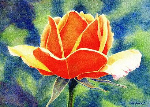 Orange Rose by Debra Spinks