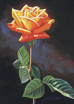 Orange Rose no. 1 by Steven Tetlow