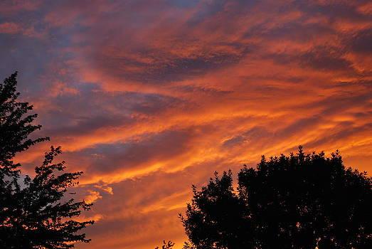 Michelle Cruz - Orange skies