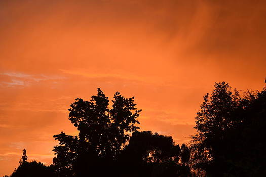 Orange Sky by Naomi Berhane