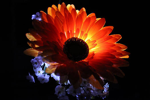 Orange Slik by Mickey Hatt